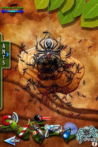Pocket Ants